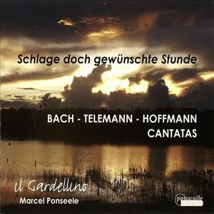 Bach Telemann Hoffmann Cantatas